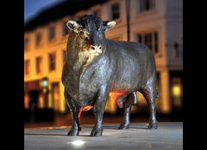 Bronze bull unveiled