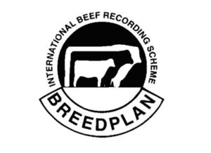 Adoption of ABRI Breedplan